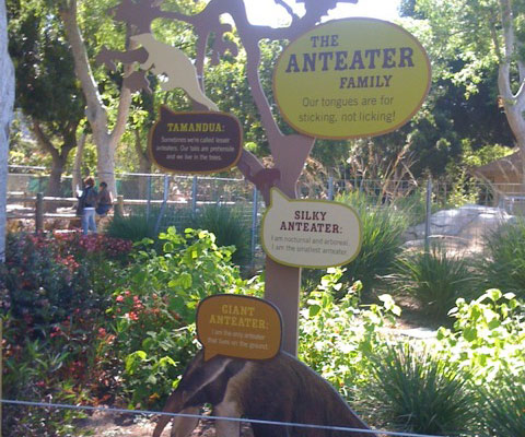 Zoo Anteater Exhibit Wayfinding Sign