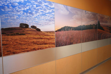 Custom Wall Laminate at Kaiser Permanent - Architectural & Interiors
