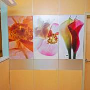 Indoor Custom Flower Graphic Sign