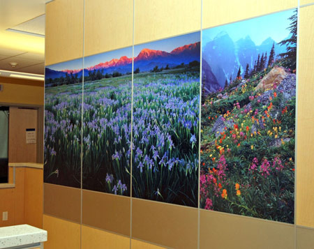 Custom Bathroom Laminate Wall Graphic atKaiser Permanent - Architectural & Interiors