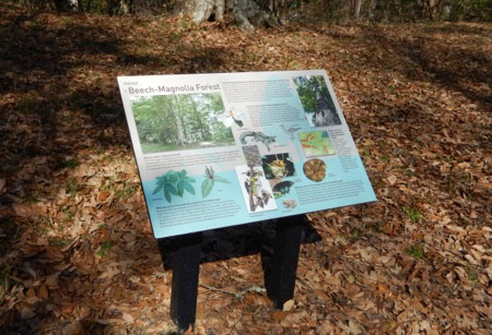 Louisiana State Arboretum - Parks and Open Spaces