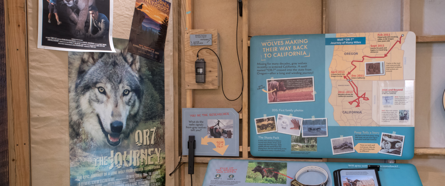 Oakland Zoo multi-interactives attached to exhibit panels
