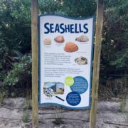 Florida Beach Resort shaped intepretive panel in kiosk featuring seashells