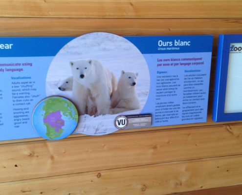 outdoor zoo exhibit interpretive panel featuring polar bears