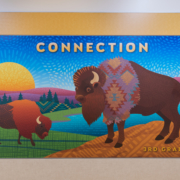 """Barnett Elementary wall panel,3rd Grade, Buffalo with the word """"connection"""""""