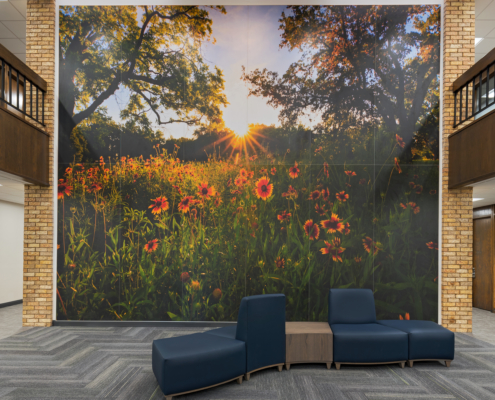 "Killeen Metroplex Med. Plaza wall mural of ""Mexican Blanket"" Wildflowers"
