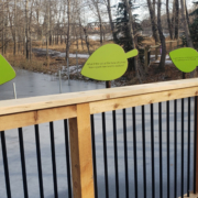 Cut to leaf shaped interpretive signs attached ot the top of a rail in a row