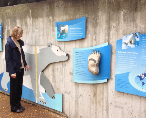 Woman standing next to large cut to shape polar bear sign with ruler