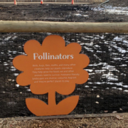 Cut to flower shape interpretive on fencing in playground