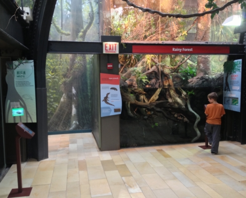 View of aquarium exhibit with multiple CHPL panles and boy