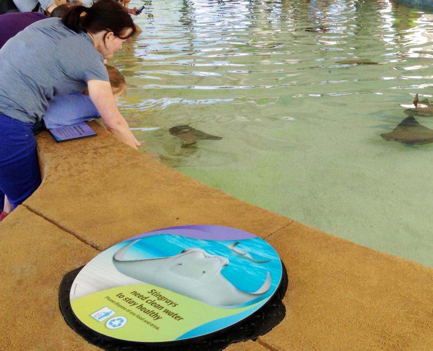 Shedd Aquarium - mom and child petting stingrays next to large round interp
