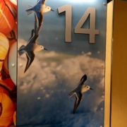 Texas Children's Hospital close up of Wall panels in reception area featuring sealife images
