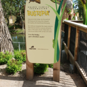 Upright cut to Shape Sign featuring graphics and Bugtopia Identity text