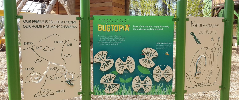 Brawn Family Foundation Bugtopia